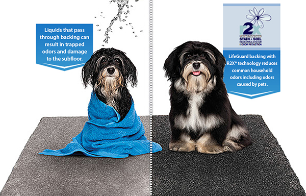 LifeGuard backing with R2X technology reduces common household odors including odors caused by pets.